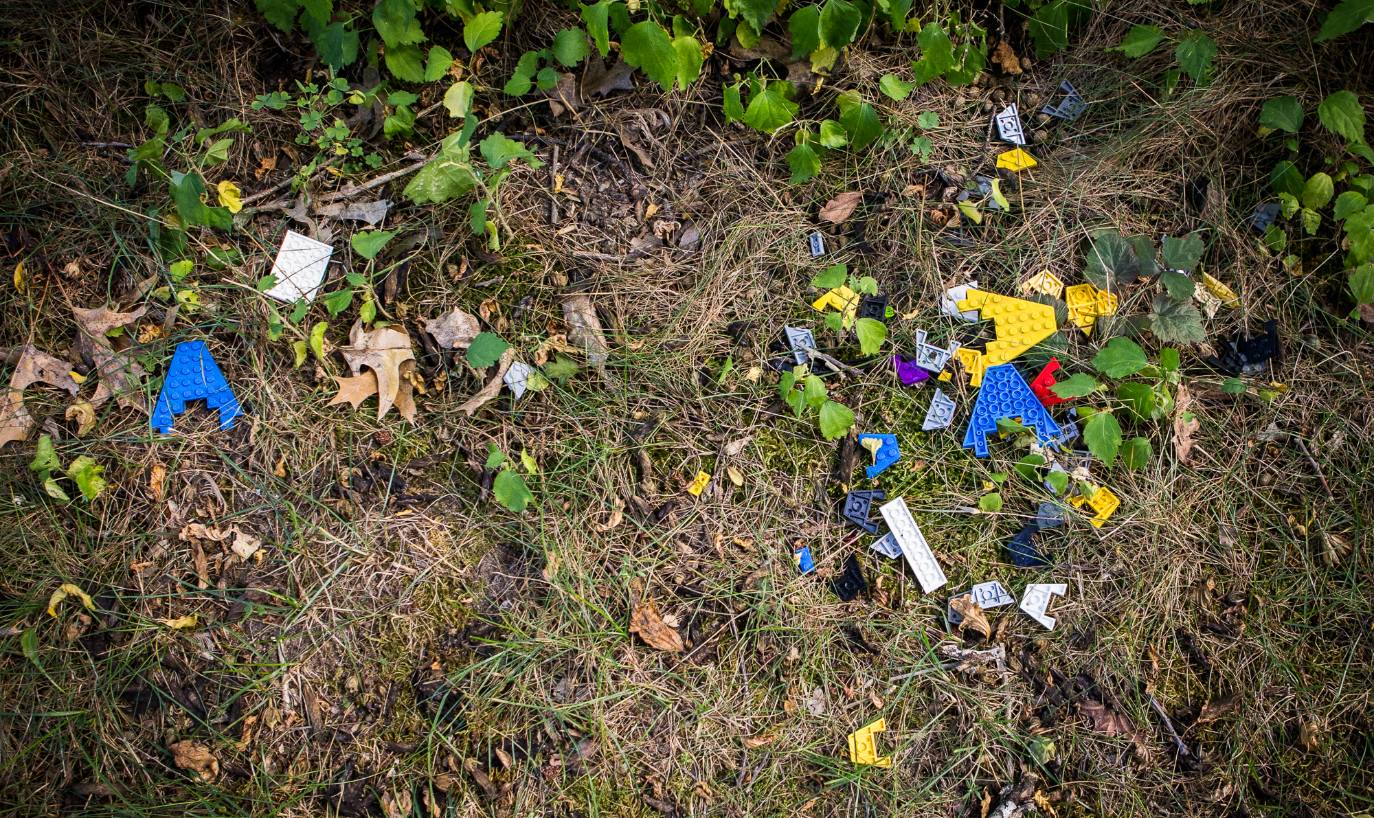 LEGO in grass and bushes